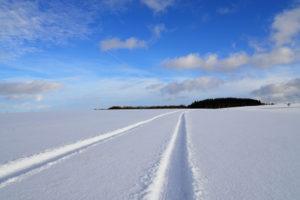Spuren im Schnee - Auf der Höchst