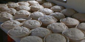 Brot Backen im Backhaus