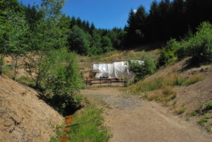 Grabungsstelle Eckfelder Trockenmaar