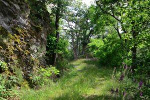 Wanderweg von der Herrenau zur Häselhütte