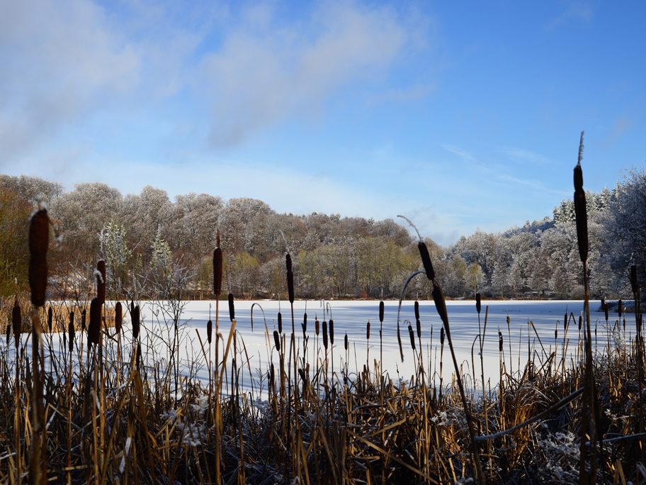 Holzmaar im Winter