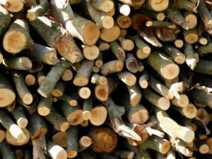 Holzstapel Backhaus