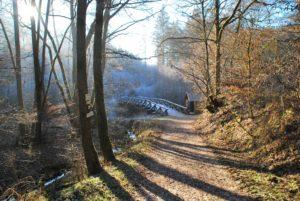 Urpferdbrücke an der Lieser